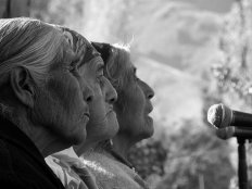 Ciclo Mesas Redondas: el pueblo Mapuche