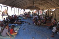 Conferencia:  'Crisis de los refugiados a debate. Derecho de asilo y refugio'