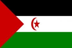 Cicle de Taules Rodones: La situació dels drets humans al Sàhara Occidental. Els territoris ocupats