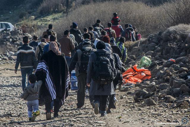 Crisi de refugiats: Origen de la crisis, protección internacional i acollida. El paper dels professionals