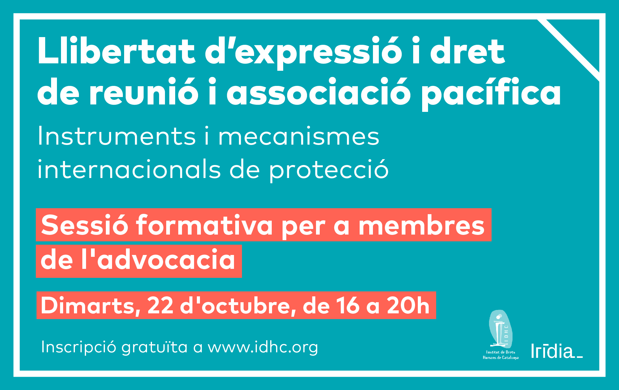 LLIBERTAT D'EXPRESSIÓ I DRET DE REUNIÓ I ASSOCIACIÓ PACÍFICA. Instruments i mecanismes internacionals de protecció