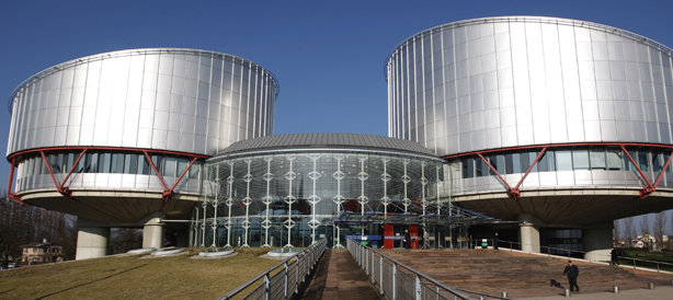 El Tribunal Europeu de Drets Humans: funcionament, procedimient d'accès i jurisprudència