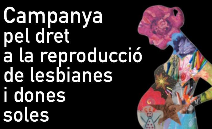 Queja de vulneración de derechos fundamentales y discriminación por el hecho de que las mujeres sin pareja masculina y las mujeres lesbianas y bisexuales no tengan garantizado el acceso a las técnicas de reproducción asistida en la sanidad pública, c