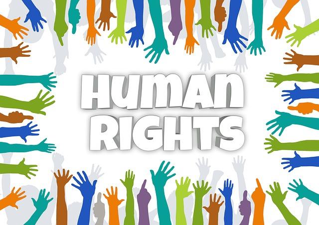 Comunicado Día Internacional de los derechos humanos 2012